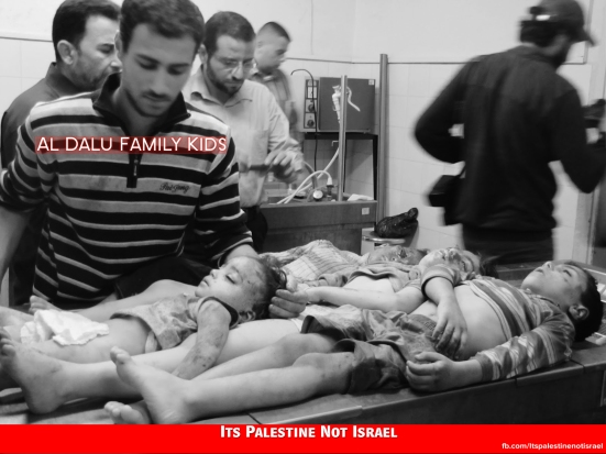 Al Dalu family_Children_killed_by_israel_in_Dec-2012-Attack