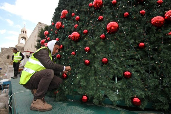 Dec 14 2012 - Bethlehem - Bethlehem Municipality crews continue their work in decorating the Christmas tree in Manger Square Photo by Ahmed Mazhar / WAFA