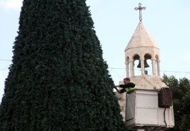 dec-14-2012-bethlehem-bethlehem-municipality-crews-continue-their-work-in-decorating-the-christmas-tree-in-manger-square-photo-by-ahmed-mazhar-4