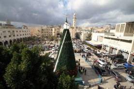 dec-14-2012-bethlehem-bethlehem-municipality-crews-continue-their-work-in-decorating-the-christmas-tree-in-manger-square-photo-by-ahmed-mazhar-5
