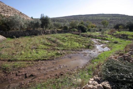 Settler_Violence_dec-4-2012-settlers-dump-wastewater-illegal-settlement-27_12_16_4_12_20122