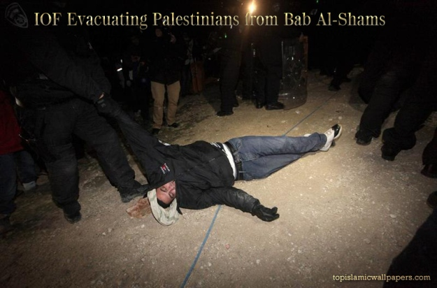 jan-13-2013-evacucation-bab-al-shams-village-palestine-tent-protest-camp-6