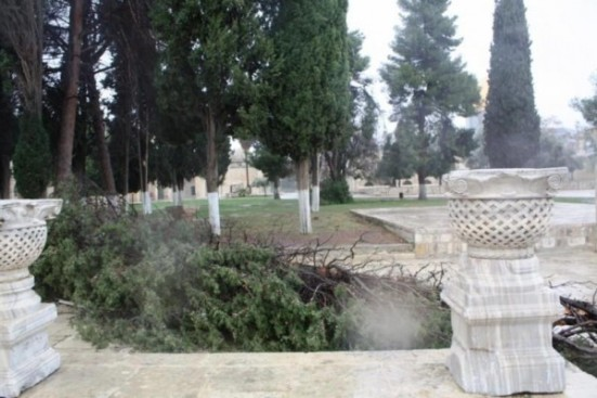 jan-2013-damage-after-storms-in-palestine-photo-via-paldf-5