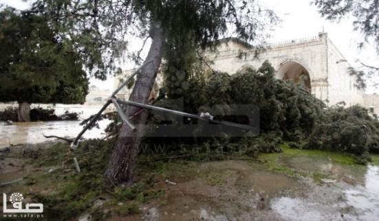 jan-7-2013-aftermath-storm-west-bank-palestine-25