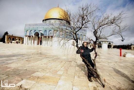 jan-7-2013-aftermath-storm-west-bank-palestine-33