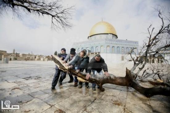 jan-7-2013-aftermath-storm-west-bank-palestine-37