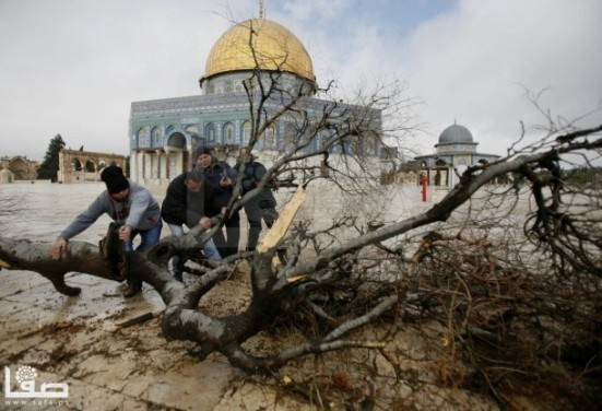 jan-7-2013-aftermath-storm-west-bank-palestine-40