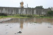 jan-8-2013-floods-in-qalqilya-photo-via-paldf-10