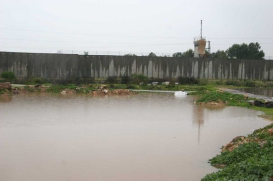 jan-8-2013-floods-in-qalqilya-photo-via-paldf-11