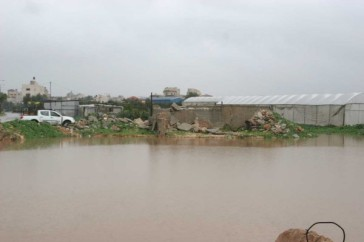 jan-8-2013-floods-in-qalqilya-photo-via-paldf-16