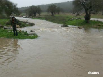 jan-8-2013-floods-in-west-bank-photo-via-paldf-1