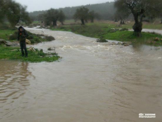 jan-8-2013-floods-in-west-bank-photo-via-paldf-1