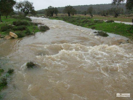 jan-8-2013-floods-in-west-bank-photo-via-paldf-2