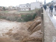 jan-8-2013-floods-in-west-bank-photo-via-paldf-23