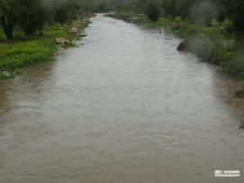 jan-8-2013-floods-in-west-bank-photo-via-paldf-4
