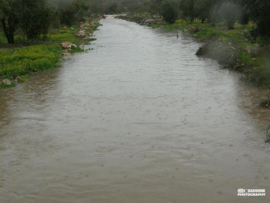 jan-8-2013-floods-in-west-bank-photo-via-paldf-4