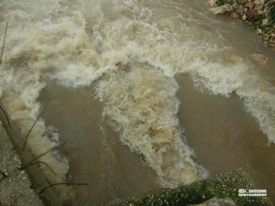 jan-8-2013-floods-in-west-bank-photo-via-paldf-7
