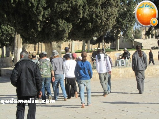 febr-7-2013-settlers-and-armed-forces-desecrate-al-aqsa-mosque-photo-by-qudsmedia-16