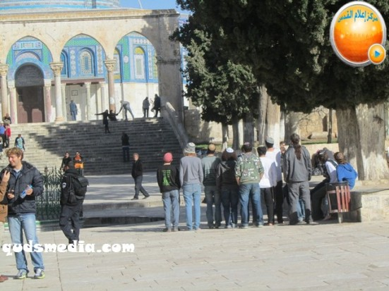 febr-7-2013-settlers-and-armed-forces-desecrate-al-aqsa-mosque-photo-by-qudsmedia-22