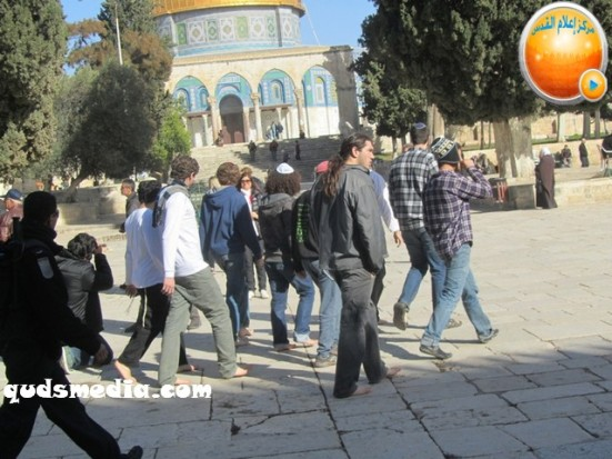 febr-7-2013-settlers-and-armed-forces-desecrate-al-aqsa-mosque-photo-by-qudsmedia-33