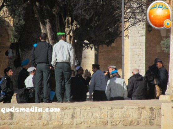 febr-7-2013-settlers-and-armed-forces-desecrate-al-aqsa-mosque-photo-by-qudsmedia-34