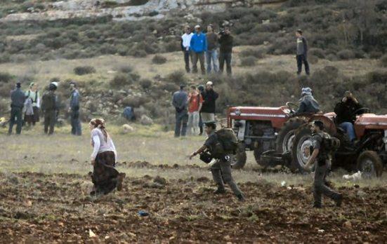 jan-2-2013-settler-attack-farmers-jaloud-6