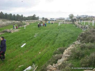 Beit Ommar weekly demonstration_March_1_2013_09