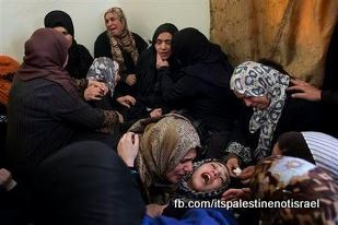 Israel kills young Palestinian near Hebron, March_12-13_2013_26