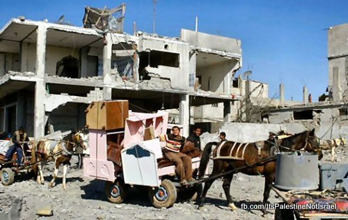 destroyed-homes-rafah-gaza