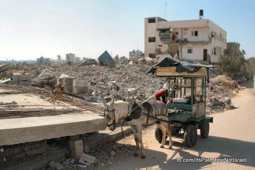 palestina-in-beeld-07