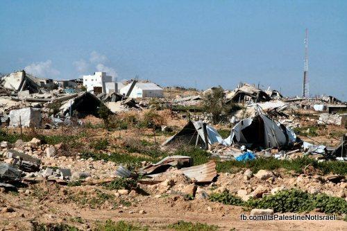 palestina-in-beeld-12