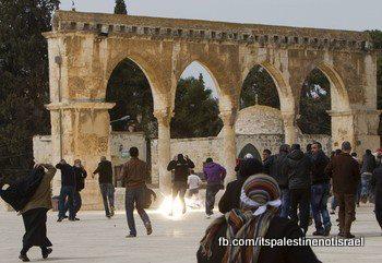 Israeli occupation forces storm Al-Aqsa compound_March_8_2013_03