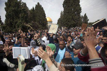 Israeli occupation forces storm Al-Aqsa compound_March_8_2013_18