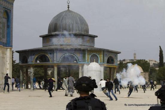 Israeli occupation forces storm Al-Aqsa compound_March_8_2013_28