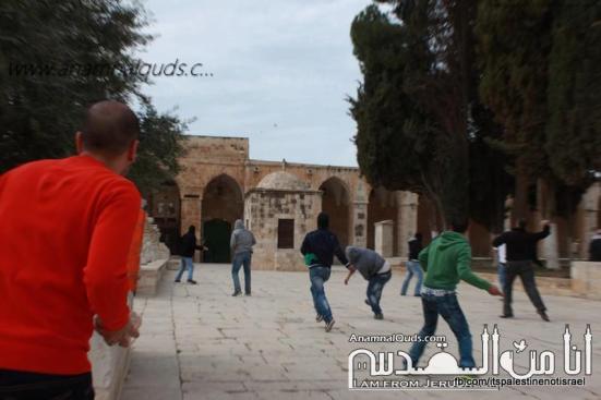Israeli occupation forces storm Al-Aqsa compound_March_8_2013_29