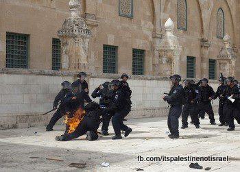 Israeli occupation forces storm Al-Aqsa compound_March_8_2013_36