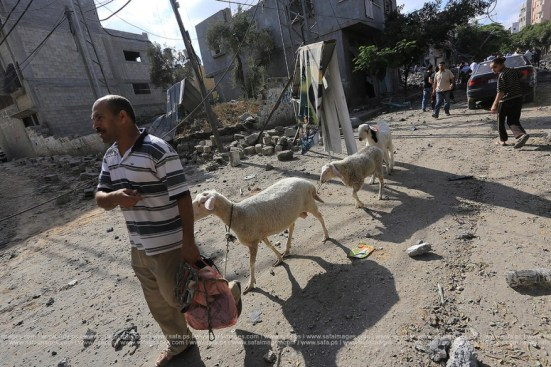 Gaza-under-attack-26-july-2014-photos-061