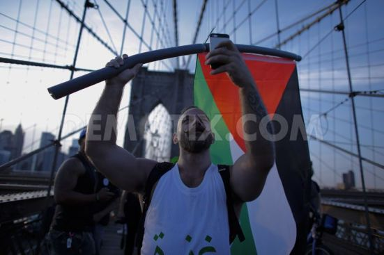 pro-palestinian-protest-on-the-brooklyn-bridge-in-new-york-city_5567856