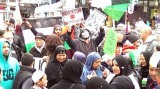 Thousands attend pro-Palestine rally in New Zealand (PHOTOS, VIDEO)